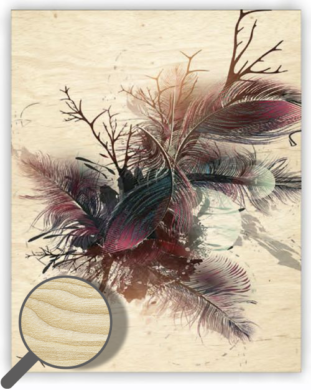 Wooden Picture Feathers  (O038)