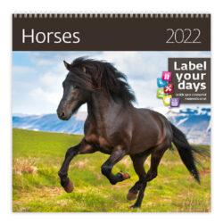 Calendar Horses