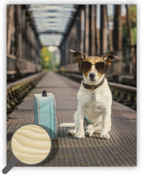 Wooden Picture Dog - 24 x 30 cm picture 