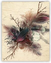 Wooden Picture Feathers(O038)
