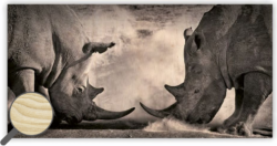 Wooden Picture Rhinos - 60,5 x 31,5 cm picture 