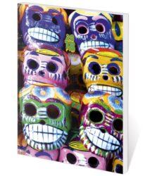 Diář kapesní Poketto Skull
