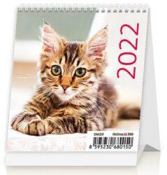 Calendar Mini Kittens